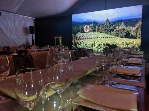 led-wall-silicon-valley-wine